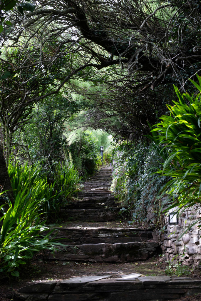 path to thatchways